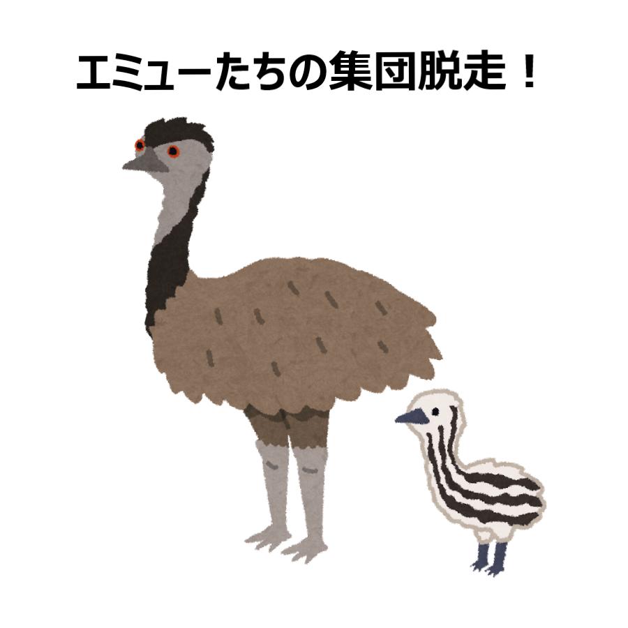 けむっし~の生き物NEWS!